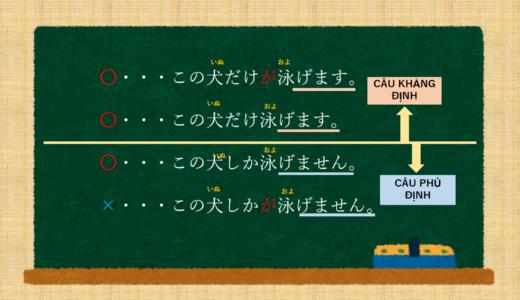 [~ Chỉ ] tiếng Nhật là gì? →~だけ,~しか. Ý nghĩa và sự khác biệt. [Ngữ pháp N5/N4]