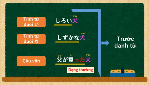 [Tiếng Nhật] Phương pháp bổ sung danh từ cho câu [Ngữ pháp N5]