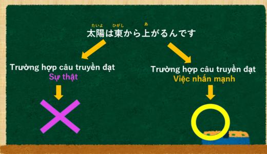 Giải thích sự khác nhau của んです và ます [Ngữ pháp N5]