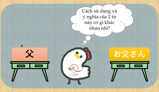 Cấu trúc đúng của câu trong tiếng Nhật【Giải thích của người Nhật】