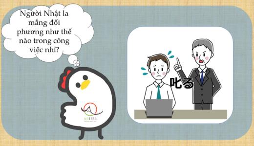 Người Nhật la mắng đối phương như thế nào trong các mối quan hệ tại nơi làm việc?【Giải thích của người Nhật】
